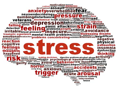 What can cause stress, factors listed